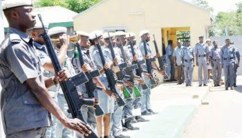 Photo of Customs intercept nine containers of Tramadol in Rivers