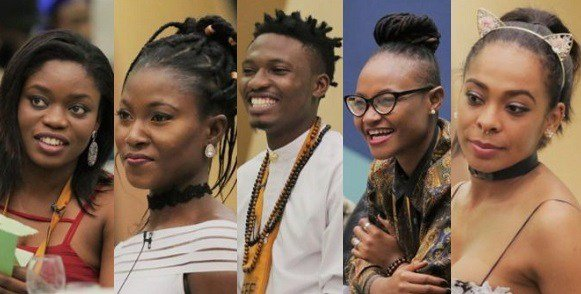 Photo of Big Brother Naija (BBNaija 2018) releases rules for the new housemates