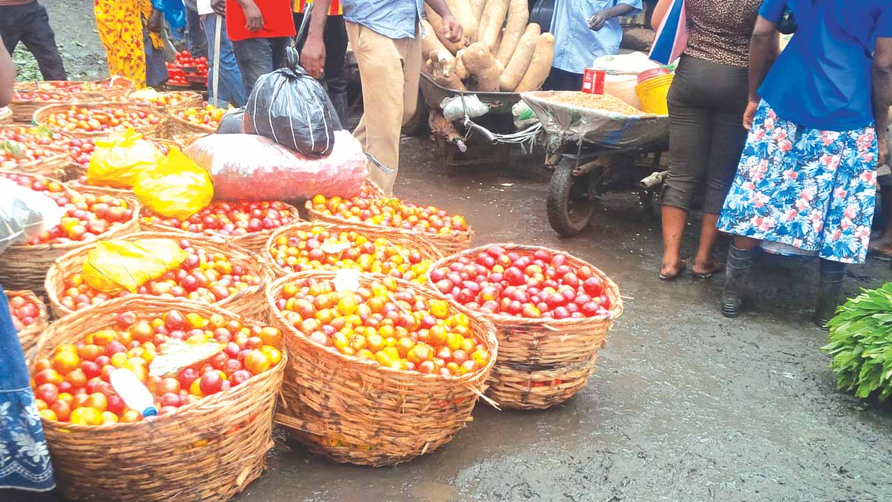 Photo of Commotion at Mile 12 market, Lagos, following the discovery of a bizarre Tomato