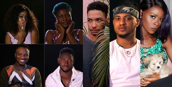 Image result for The housemates naija 2018