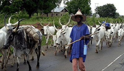 Photo of Herdsmen kill monarch & 28 Others in fresh attacks