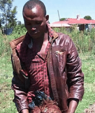 Photo of How a man raped neighbour's fowls 'all through the night' to death