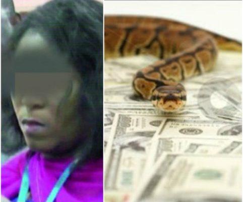 MONEY-SWALLOWING SNAKE: JAMB suspends Staff as investigation begins (Details)
