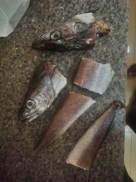 Photo of See the plastic fake fish a man bought that refused to cook (Photos)