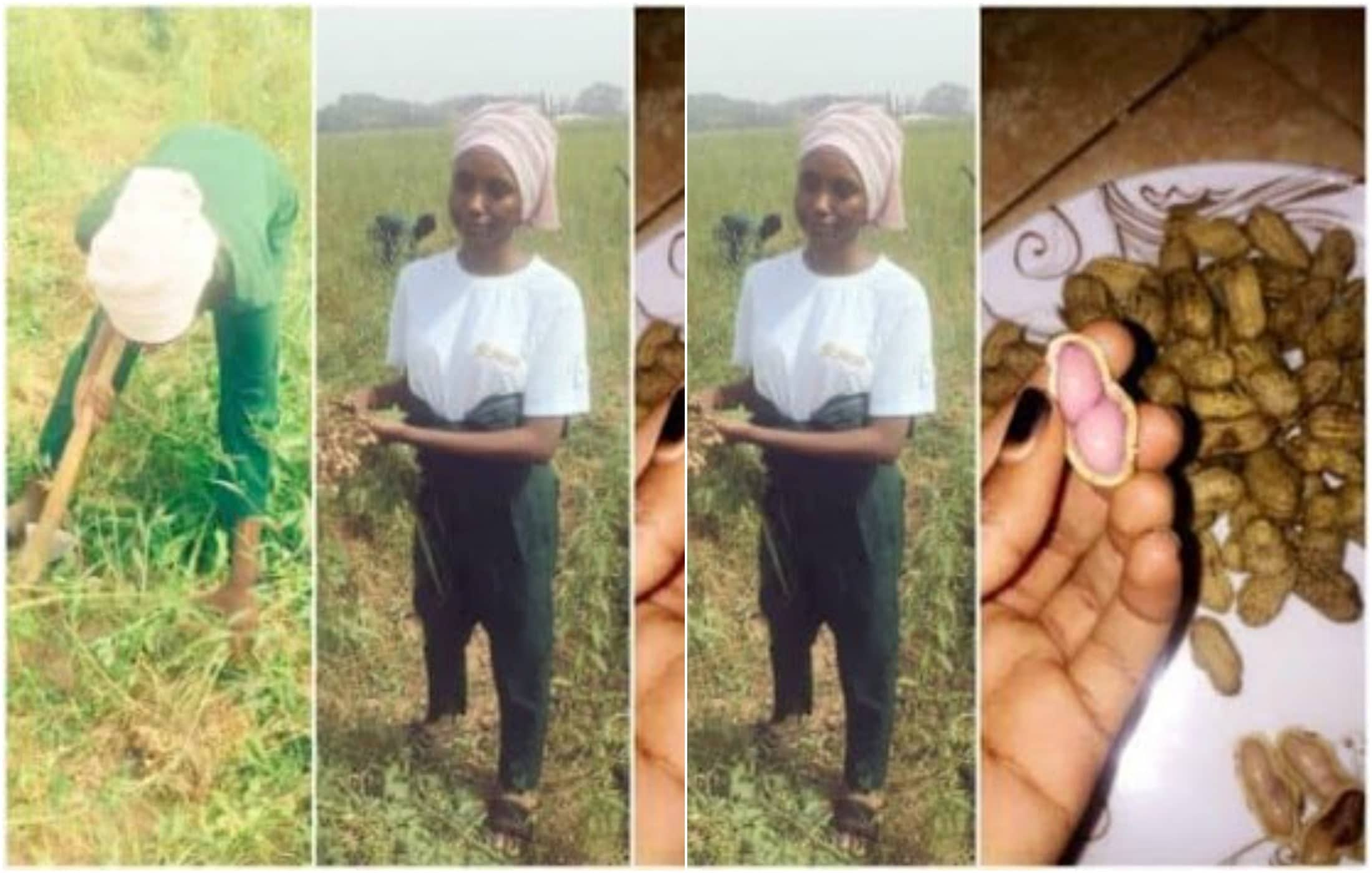 Nigerian slay queens agriculture