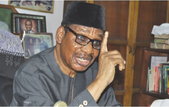 Photo of Prof. Sagay backs Danjuma's self-defense, says law allows Nigerians to defend themselves