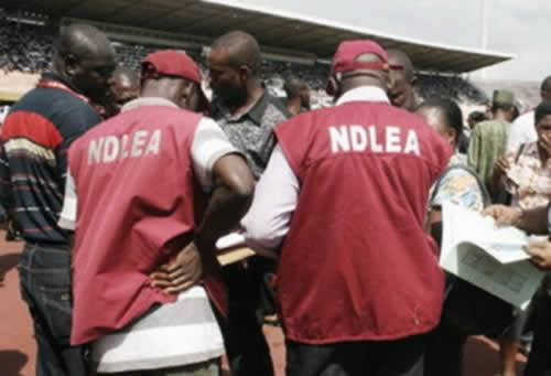 Photo of NDLEA impounds 159 million tablets of Tramadol