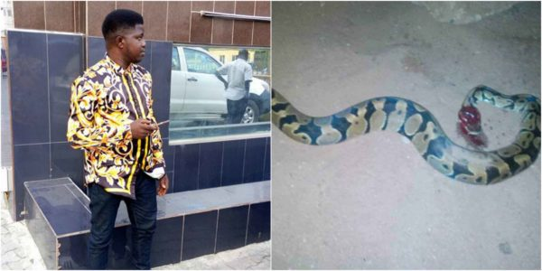 Photo of Man narrates how he battled with a snake at night