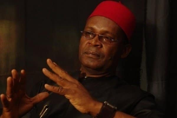 Photo of 10 reasons why I insist some Nigerian youths are lazy – Joe Igbokwe
