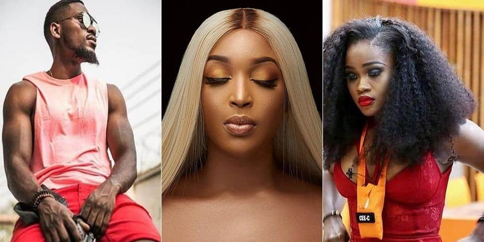 Photo of #BBNaija: Cee-C was rude to Tobi because she loves him too much – Dabota Lawson