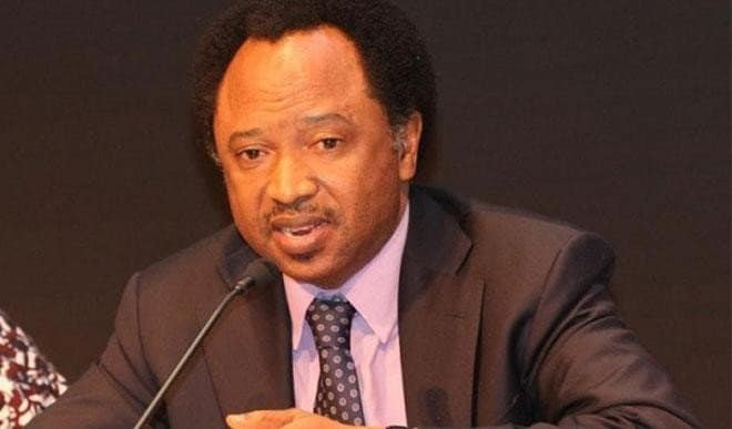 Photo of Senator Shehu Sani identifies 15 threats to democracy in Nigeria
