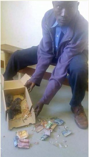 Photo of Man storms police station with rats that ate his money in a b ox
