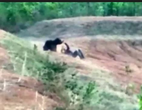 Photo of Stubborn man mauled to death while trying to take selfie with a bear