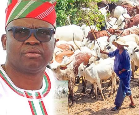 Herdsmen disobey anti-open grazing law in Ekiti few days after Fayemi's victory