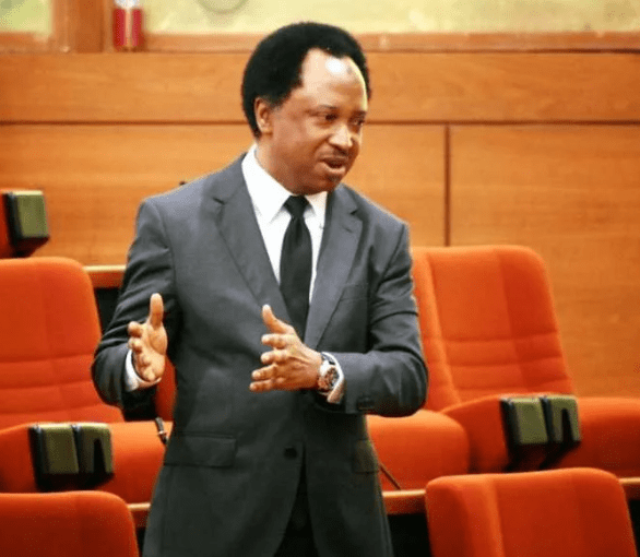 Photo of Buhari's failures won't stop him from securing a second term – Shehu Sani