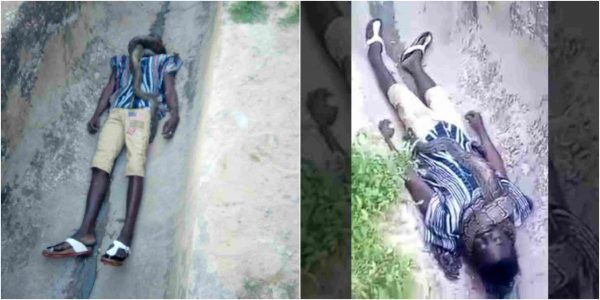 Photo of This man was strangled to death by his pet snake (Photo)