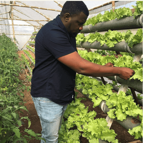 Photo of John Dumelo flaunts his farm. preaches agriculture (Photos)