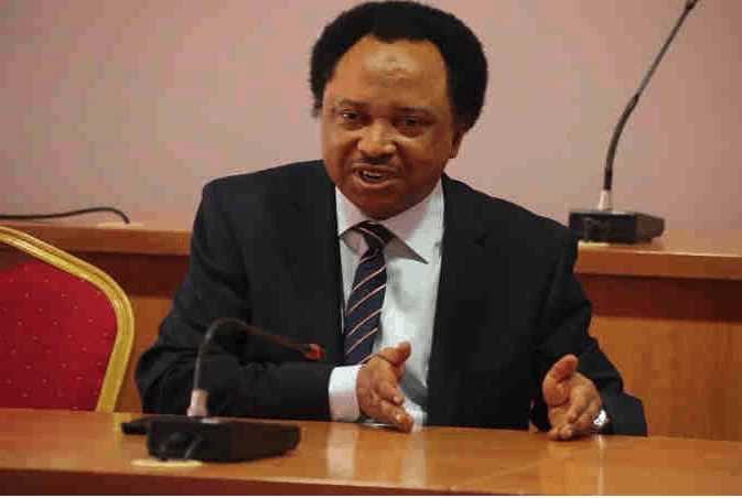 Photo of Shehu Sani reacts to reports of Buhari being dead, cloned