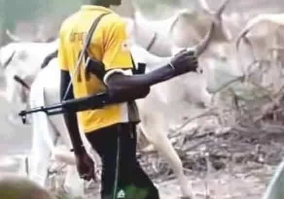 Photo of Fulani Herdsmen can collapse Nigeria is threatened – Miyetti Allah