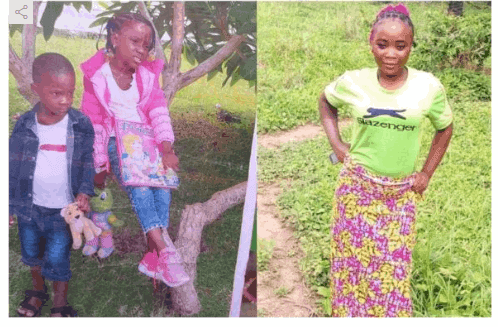 Photo of House help abducts boss kids, 8 days after employment