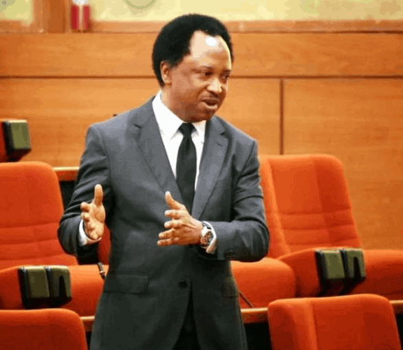 Photo of Shehu Sani speaks on why he deserves to be re-elected as senator