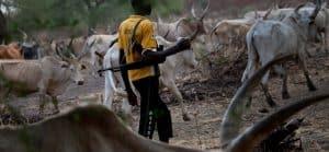 Photo of BREAKING: Suspected herdsmen abduct 14 passengers in Osun