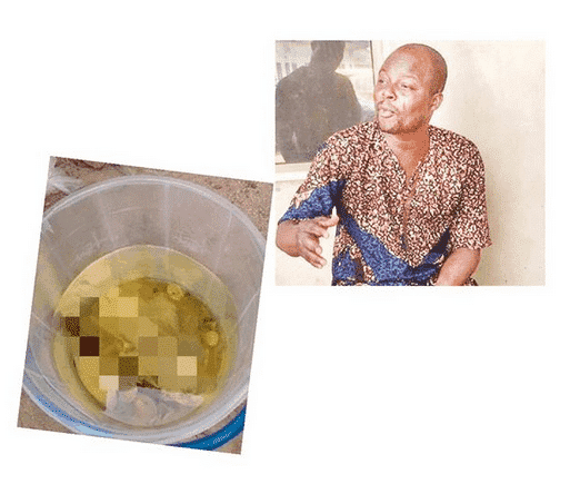 Photo of Why we demand panties – Herbalist arrested for money rituals