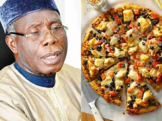 """Photo of Audu Ogbeh in trouble over """"Pizza from London"""" statement"""