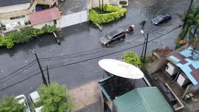 Photo of Flooding, fallen trees and electric poles trail early morning Rainfall In Lagos (Photos)