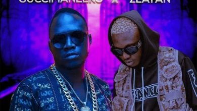 download Guccimaneeko ft Zlatan Ibile Malemole mp3 download