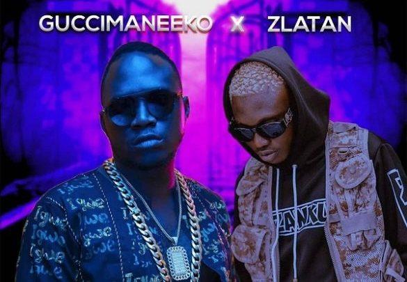 download Guccimaneeko ft Zlatan Ibile Malemole mp3 download