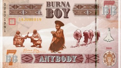 Photo of Burna Boy – AnyBody
