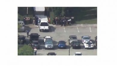 Photo of Disturbed employee opens fire on his colleagues, kills 12