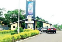 Photo of Drama as Man kills bat on OAU campus