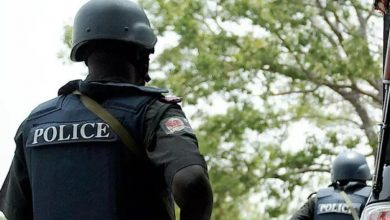 Photo of Protest rock Oyo community as police whisk away 'Monarch'