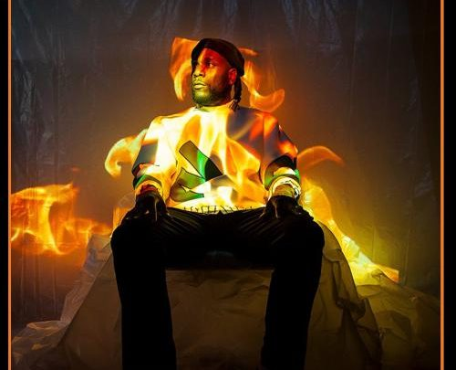 download mp3 Burna Boy Pull Up mp3 download