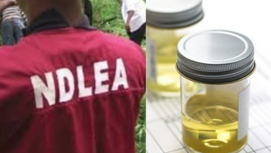 Photo of After Tramadol, Nigerian youths now take processed urine to feel high – NDLEA says
