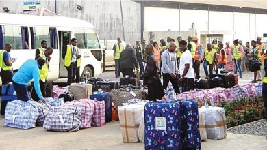 Photo of What we'll do with the 187 Nigerians who returned from South Africa – Presidency