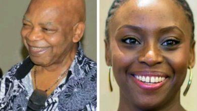 Photo of Chimamanda Adichie accuses billionaire Arthur Eze of grabbing her ancestral lands