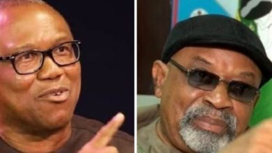 Photo of You're too small to diminish me, Peter Obi tells Ngige