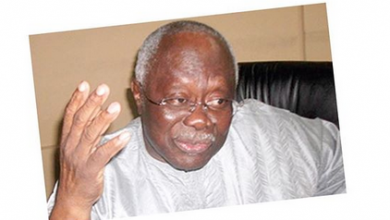 Photo of Nigerian Companies Advertising On Foreign Media Are Shameless – Bode George