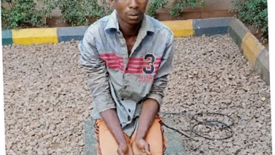 Photo of I want to die! – Herder who raped 54-yr-old lady to death