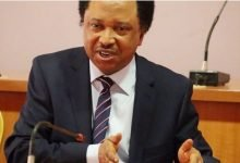 Photo of Accept the truth from the Northern Elders Forum – Shehu Sani tells Presidency