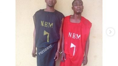 Photo of Ilaro Polytechnic SUG president arrested in cult regalia suspended by school