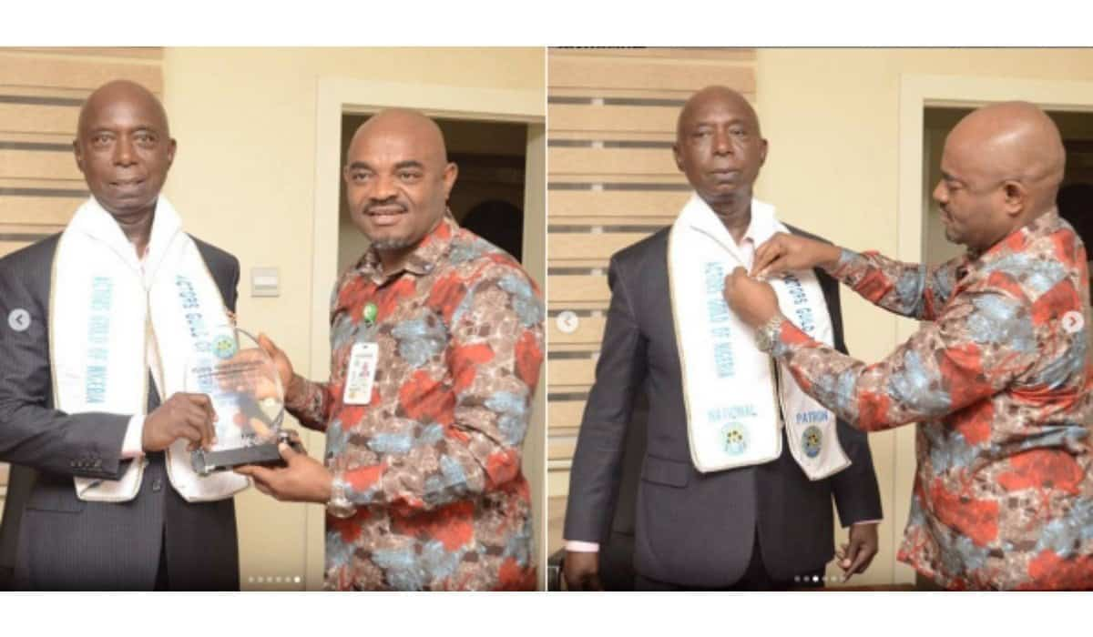 Ned Nwoko appointed as Chairman of AGN