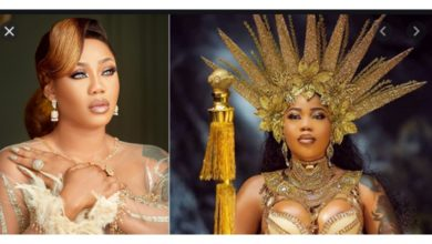Photo of Toyin Lawani drags AMVCA for crowning Mercy and Mike best dressed