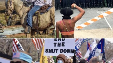Photo of Americans take to the streets in protest against lockdown (Video)