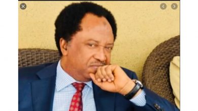 Photo of Senator Shehu Sani mocks Nigerian politicians who used to fly abroad for medical treatments