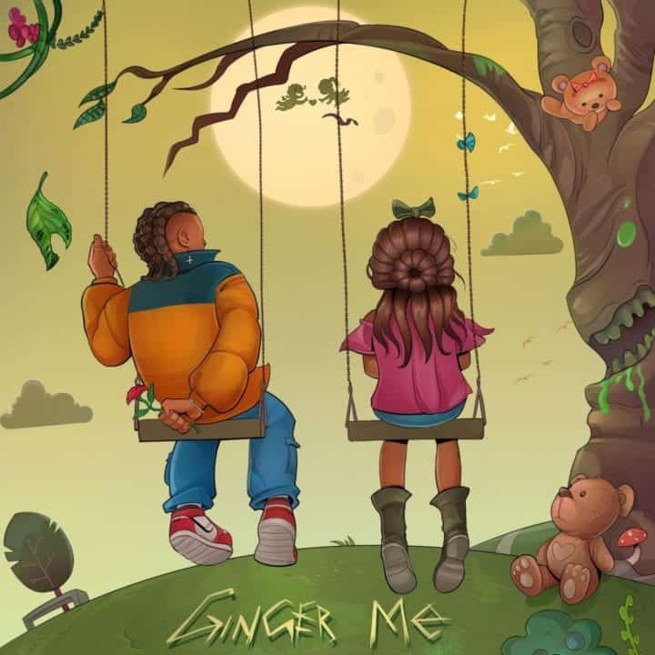 Photo of Music: Rema – Ginger Me
