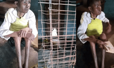 Woman caged by husband